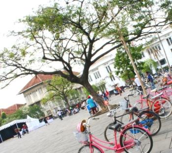 Sepeda di Bawah Pohon