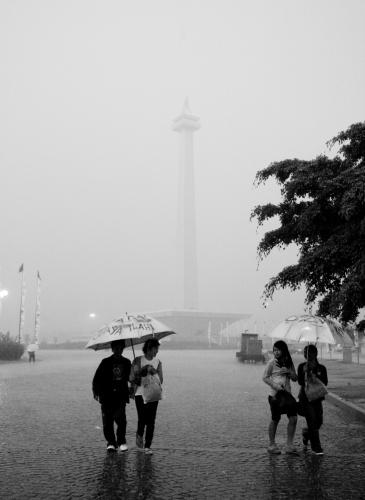lady rain 16