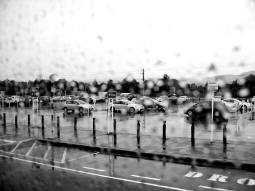 lady rain 18