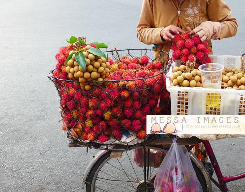 Penjual Rambutan Bersepeda
